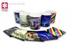 Ivory Ceramics - Colorpad